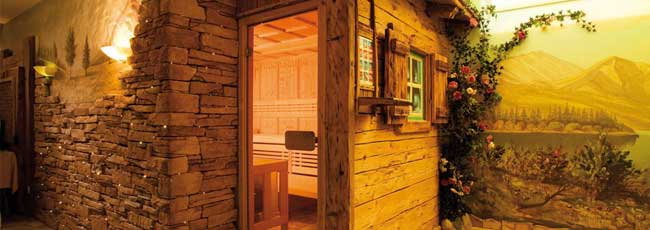 Well Solutions Sauna